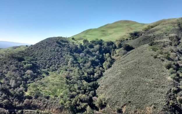 Saturday, April 22, 2017 (Earth Day) - Alum Rock Park