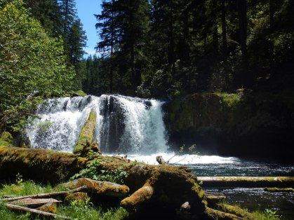 "Hiking the ""Dread and Terror"" section of the North Umpqua Trail. Fantastic!!"