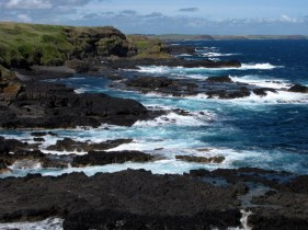 Gorgeous Phillip Island
