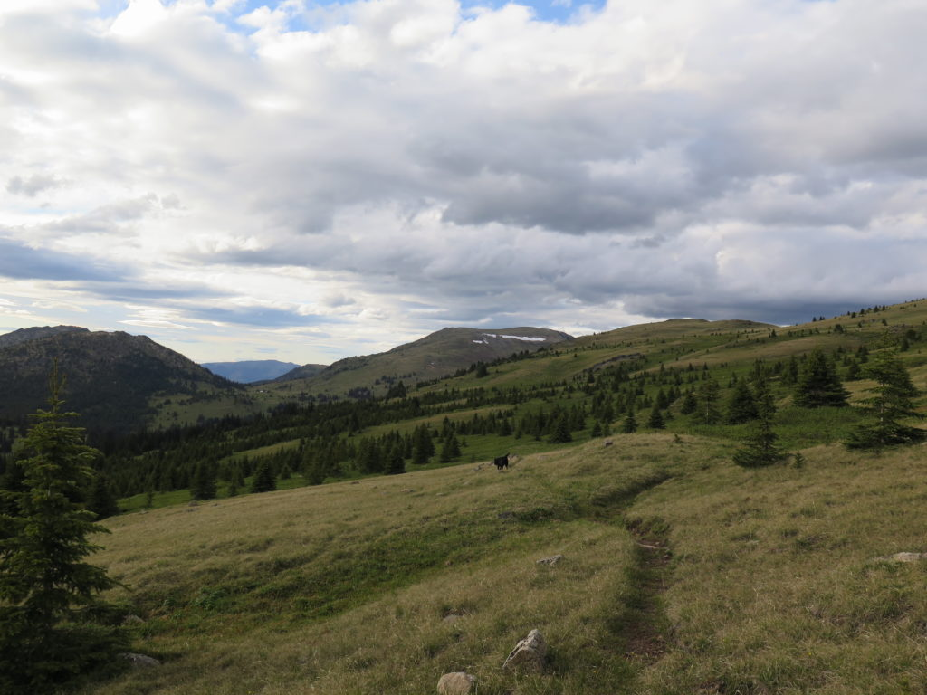 Talk about wide open spaces! This is the trail we followed partially up to Horseshoe Mountain, Armstrong Mountain in the distance.