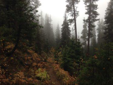 I love fall hiking!!!