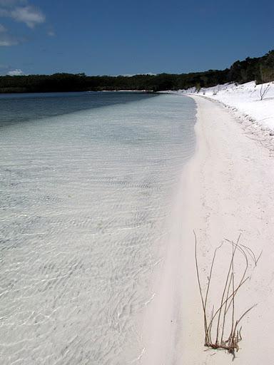 The white sand of beautiful Lake McKenzie
