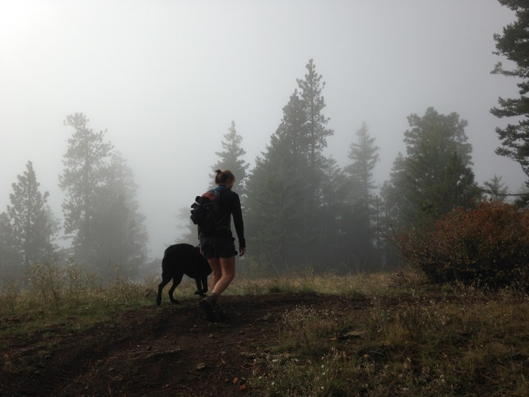 Starting the hike up into the fog