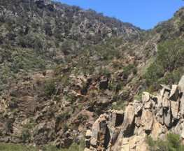 Trail-Hiking-Werribee-Gorge
