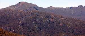 Mount-Cobberas