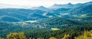 homeinvisagepublic_htmltrailhikingv1wp-contentuploads201606trail-hiking-keppell-lookout-steavenson-falls-15-5km.jpg