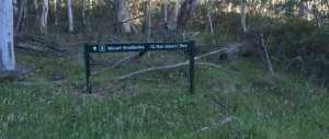 homeinvisagepublic_htmltrailhikingwp-contentuploads201611trail-hiking-mount-stradbroke-trail.jpg