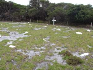 Ly-ee-moon Graveyard
