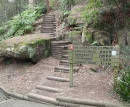 Thornleigh to Galston Gorge