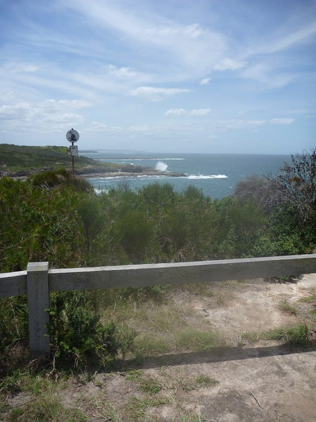 Wallarah Coastal Walk