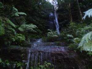 Wentworth Falls Conservation Hut Loop