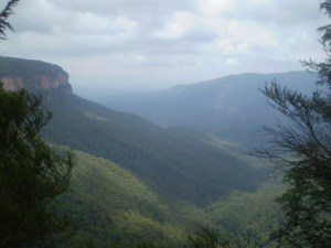 Wentworth Falls to Denfenella Lookout