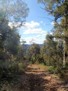 Yarramalong to Watagan Creek via Basin Campsite