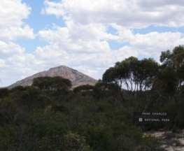 Peak Charles Trail