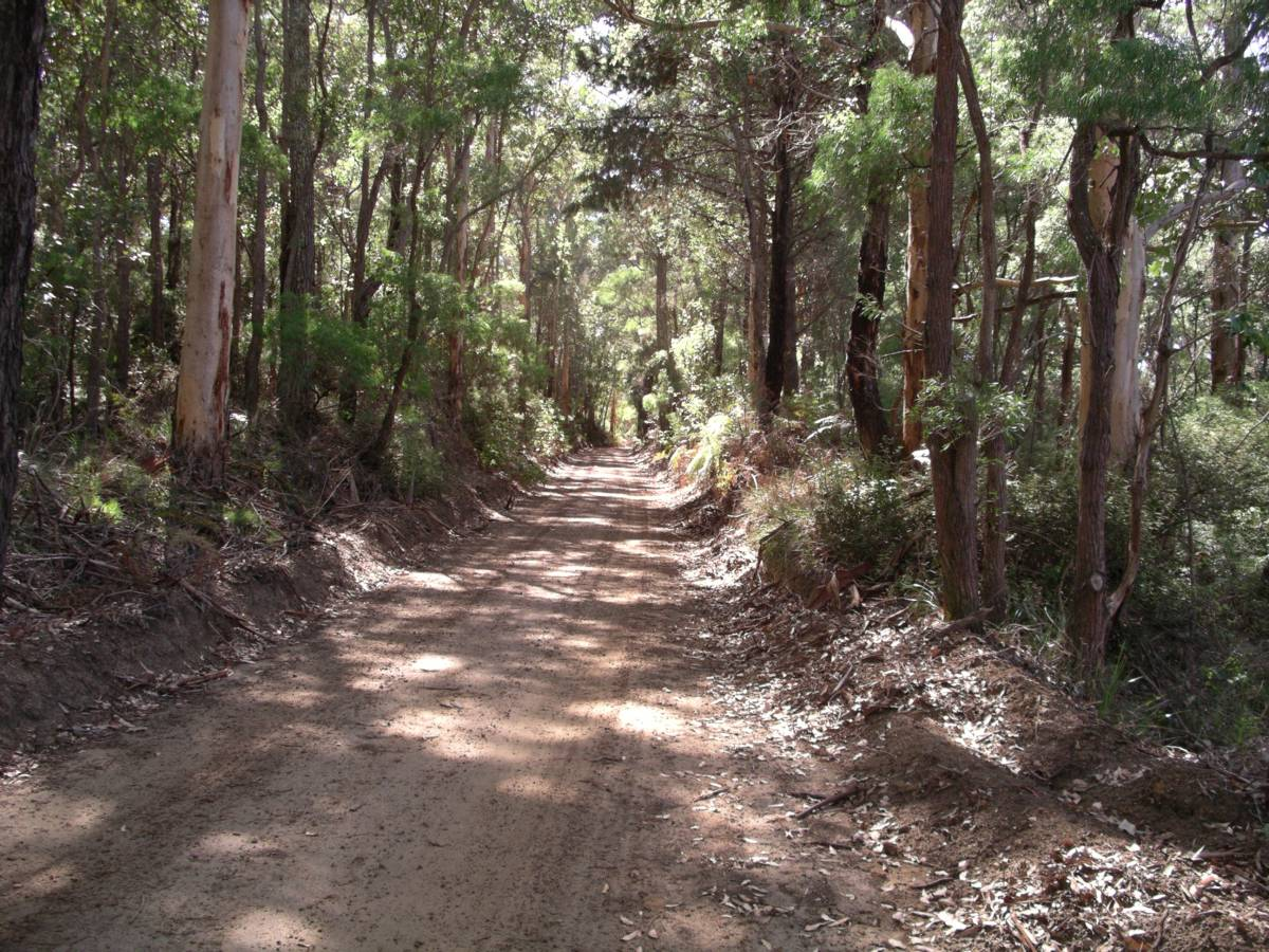 Torbay to Elleker Rail Trail