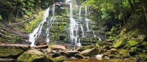 Nelson Falls Trail Hiking Australia
