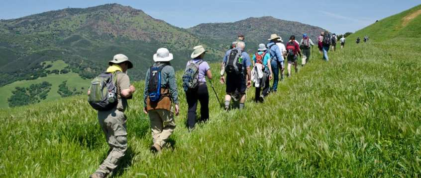 Guidelines for Leading Hikes