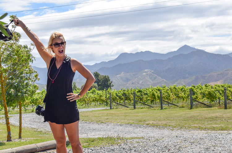 DIY Bike Tour Wineries Marlborough Renwick New Zealand - Trailing Rachel