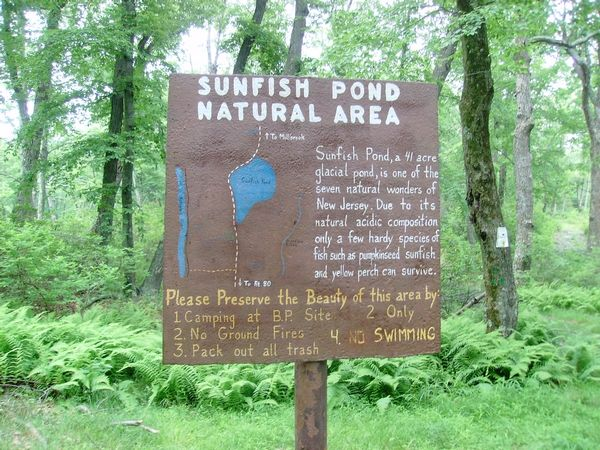 Image result for sunfish pond pa