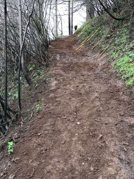 A smooth section of uphill trail, with tools leaning against the upslope.