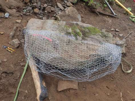 A large rock with chicken wire wrapped around half of it.