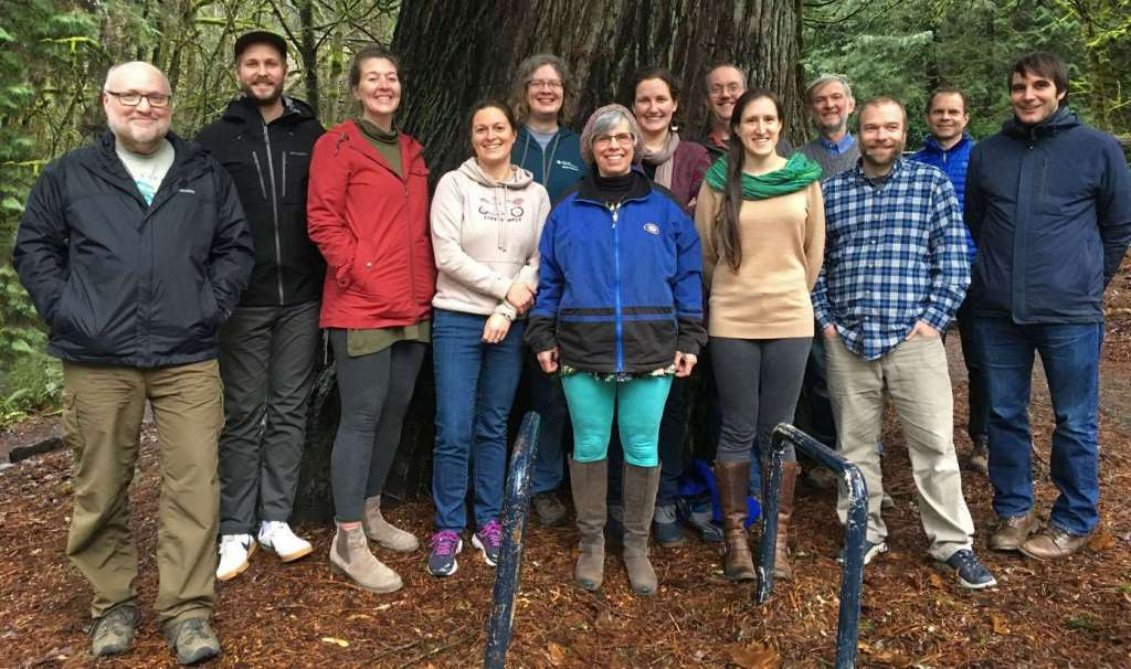 A group of people standing under a large cedar tree