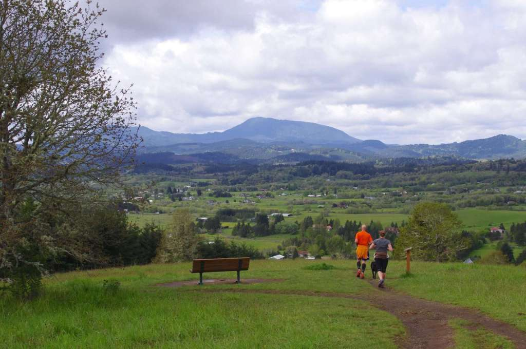 Two hikers and a dog descend a trail toward a green valley sprinkled with buildings, against a backdrop of rounded forested hills and a mountain.