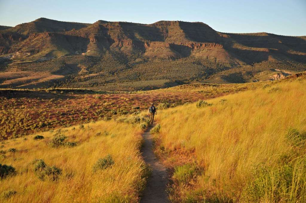 A man hikes away from the camera on a trail through dry grass with a mountain rising beyond.