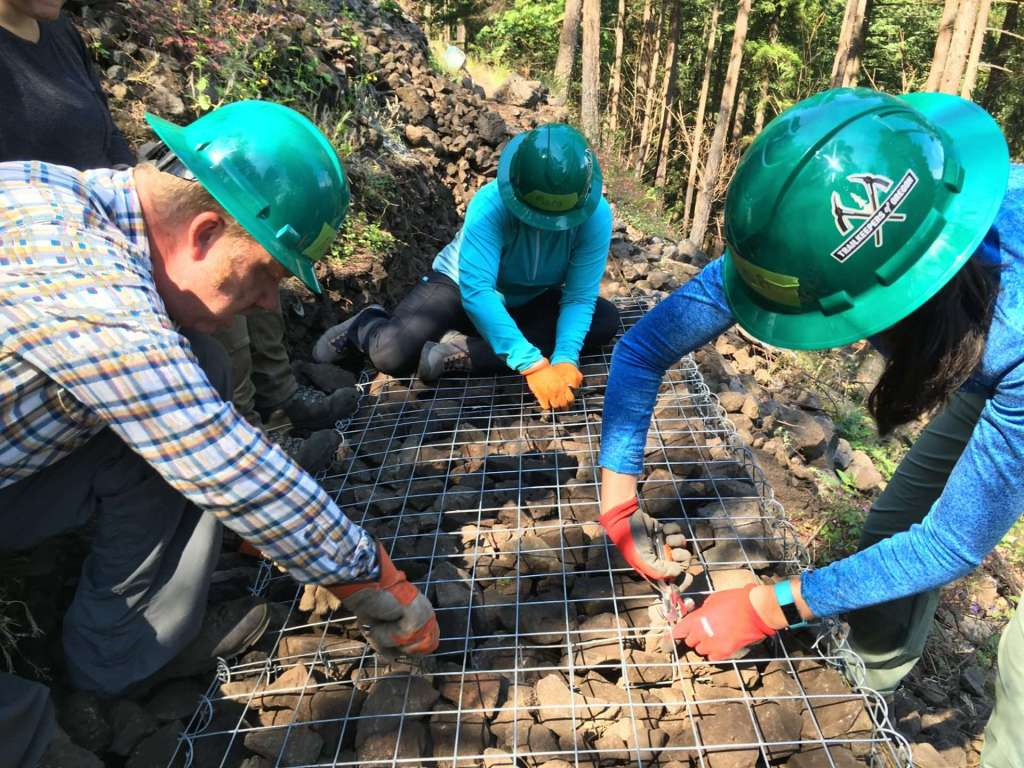 Three people in green hard hats leaning over a metal grid with rocks beneath it.