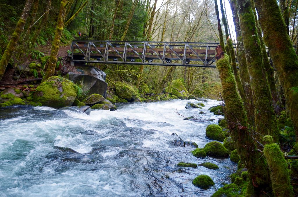 A steel hiker's bridge spans a rushing creek lined by mossy boulders.