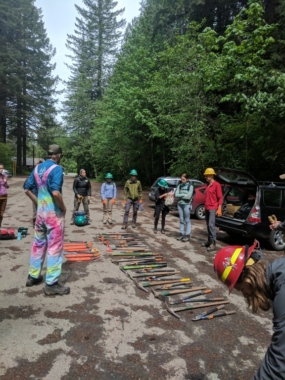 Trail work volunteers stand around trail tools laid out in a parking lot.