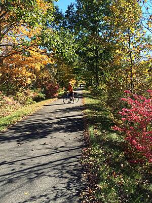 Image result for harlem valley rail trail