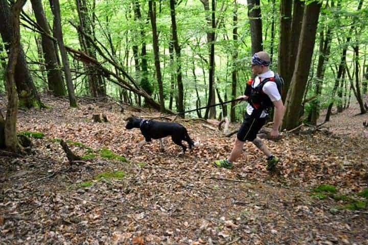 Läufer und Hund im Wald mit Leine