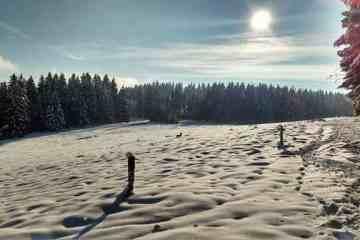 Winterwonderland Thüringer Wald