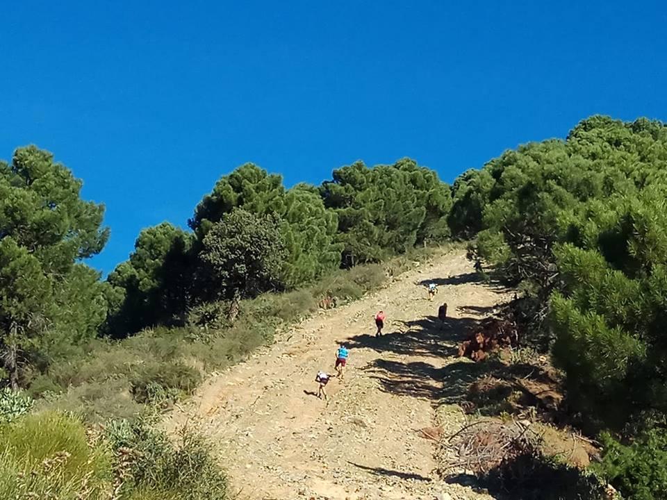 Sierra Tejeda (Alberto GT Trail)