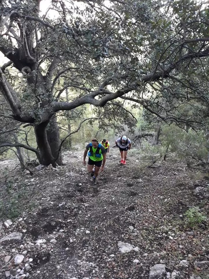 Sendas por donde discurre el Assota Trail