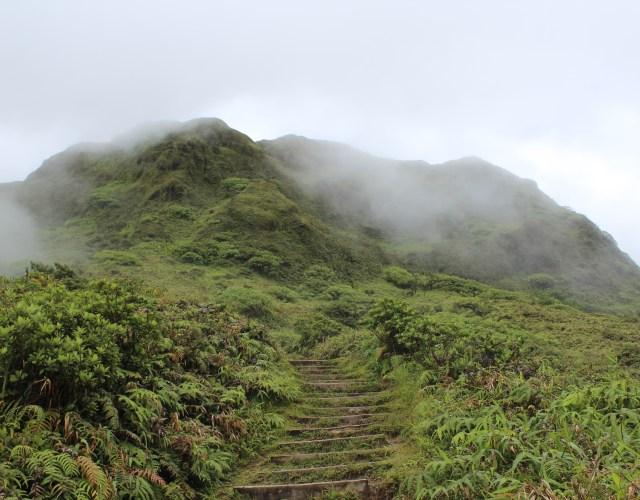 Mt. Pelee Volcano Hike