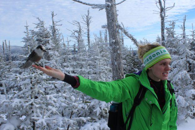 mt. tom winter hike