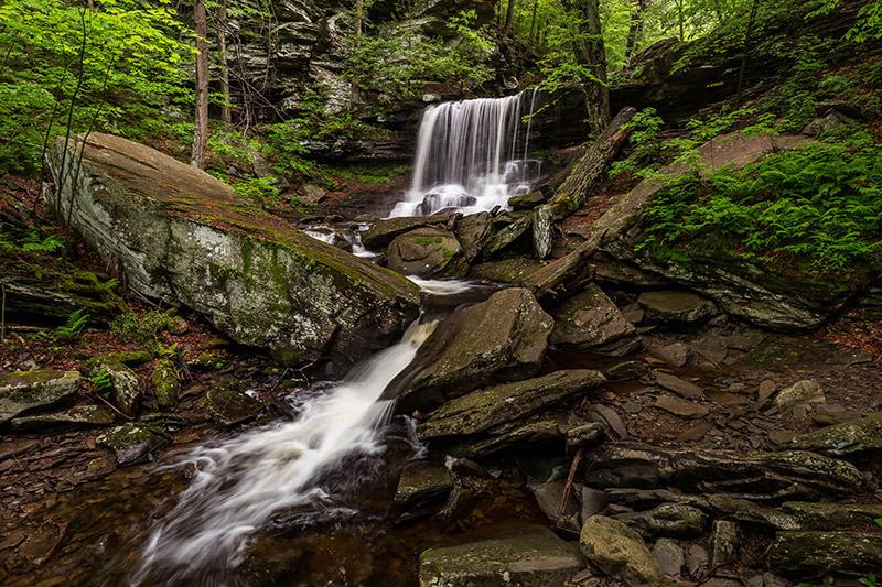 falls trail Ricketts Glen Hike