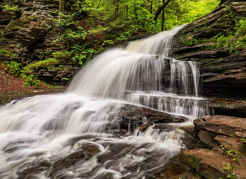 Hiking the Falls Trail at Ricketts Glen State Park in Pennsylvania