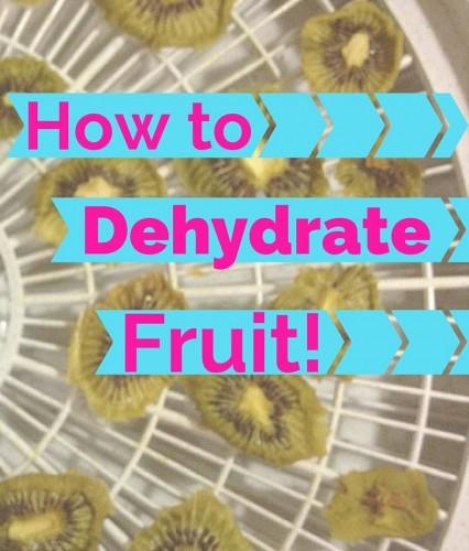dehydrate fruit