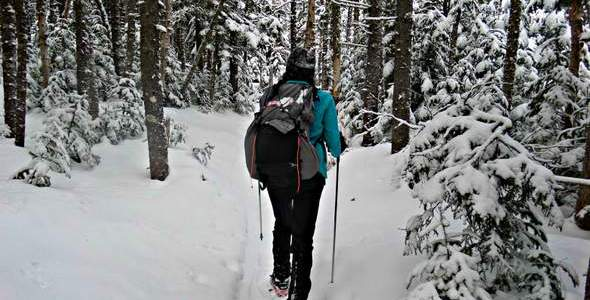 Winter Gear Guide for Day Hikes