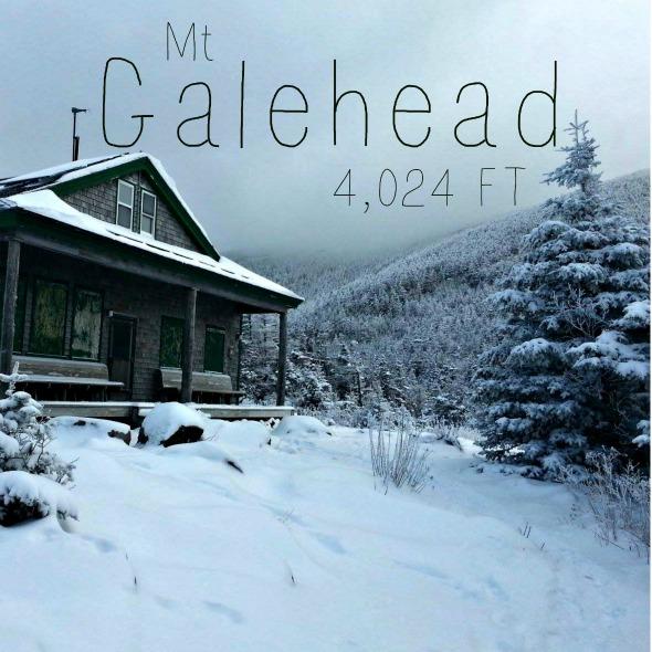 galehead