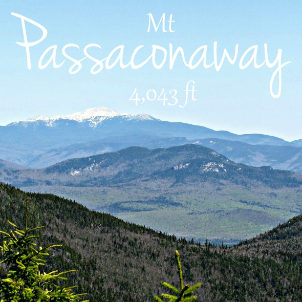 http://trailtosummit.com/whiteface-and-passaconaway/
