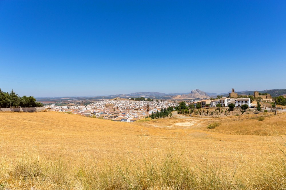 Ride through fields to reach Antequera
