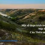 """Trích đoạn """"Mặt hồ tĩnh lặng"""" của thiền sư Ajahn Chah"""