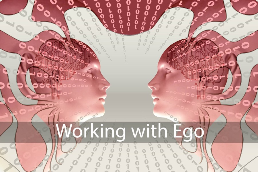 Working with Ego