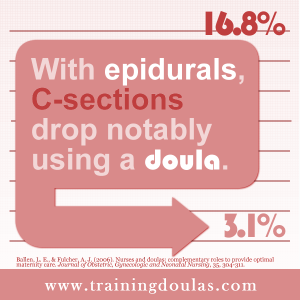 needs of professional doula