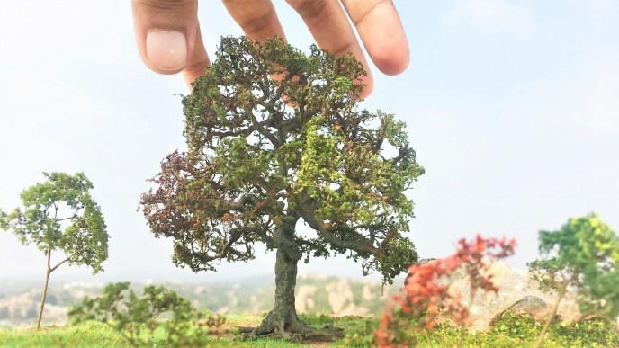 Model Mahua Tree