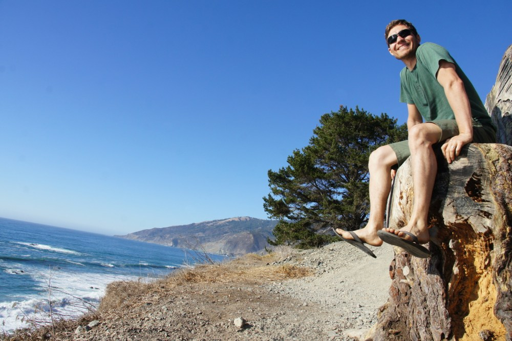 A chair carved into a stump in Big Sur.